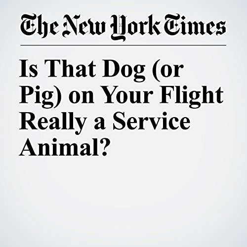 Is That Dog (or Pig) on Your Flight Really a Service Animal? audiobook cover art