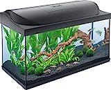 Tetra Starter Line Kit d'Aquarium Complet avec éclairage LED – Cuve Stable pour débutant avec matériel, Nourriture et Produit d'entretien Différentes Tailles Disponibles