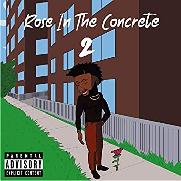 Rose in the Concrete 2