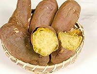 【冷凍】安納芋の焼芋 500g【化学調味料・合成着色料・合成保存料無添加】