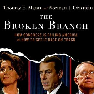 The Broken Branch cover art