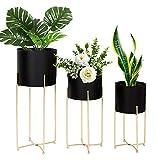 LANPU Modern Tall Planter