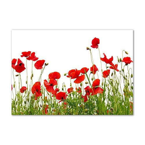 Tulup - Spritzschutz aus Glas für die Küche - 100x70 cm - Küchenrückwand - Küche Herd - Wandanbringung - Küchenrückwand aus Echtglas - Memoboard - Wassertropfen - Blumen & Pflanzen - Rot - Mohnblumen