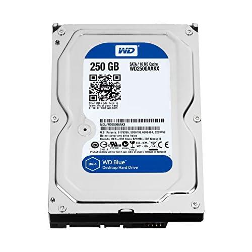 WD WD2500AAKX Blu Hard Disk Desktop da 250 GB, 7200 RPM, SATA 6 GB/s, 16 MB Cache, 3.5