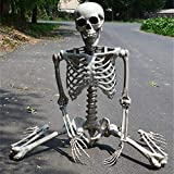 """SUGOO 35"""" Halloween Skeleton Decorations Life Size Posable Skeleton Model Realistic Human (Children) Bones for Halloween Party Supplies, Haunted House Accessories, Bar, Cemetery Decoration"""