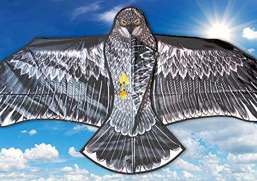 molinoRC Wunderschöner Drachen Adler | Drache Vogel | Herbstdrachen Inclusive 30m Drachenschnur | Erwachsene und Familien | Drachenflieger | Blitzversand