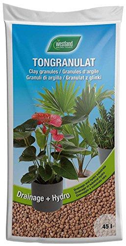 Westland Ton-Granulat für alle Topfpflanzen, Grün- und Blühpflanzen, Ton-Farbe, 45 Liter