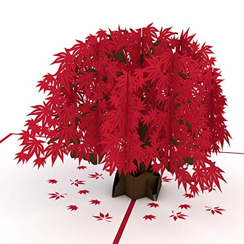 Lovepop Japanese Maple Pop Up Card - 3D Card, Mother's Day Pop Up Card, Fall Greeting Card, Card for Mom, Card for Wife, Anniversary Pop Up Cards, Thanksgiving Pop Up Card, Maple Tree Card