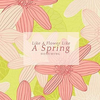 봄처럼 꽃처럼