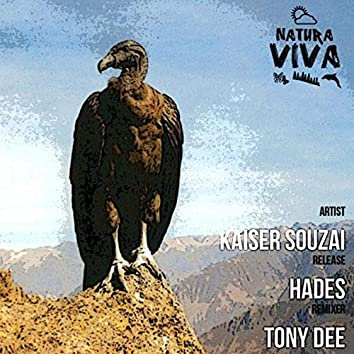 Hades (Tony Dee Remix)