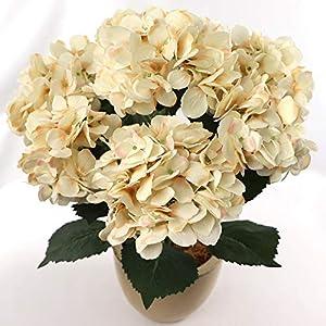 Larksilk Hydrangea Silk Flower Bush, Seven Heads Per Bush, UV Resistant, Indoor & Outdoor Silk Plant, Adjustable Stem, Rich Green Leaves, Wedding, Centerpiece, & Event Decor(Beige)