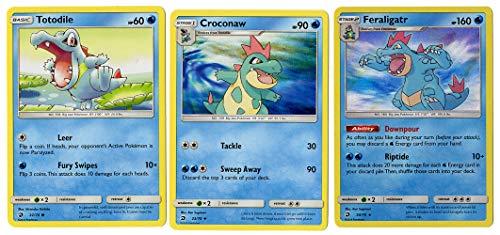 Pokemon Evolution Set - FERALIGATR CROCONAW Totodile - Dragon Majesty 24/70 - Holo Rare Card LOT