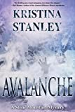 Avalanche (A Stone Mountain Mystery, Band 3)