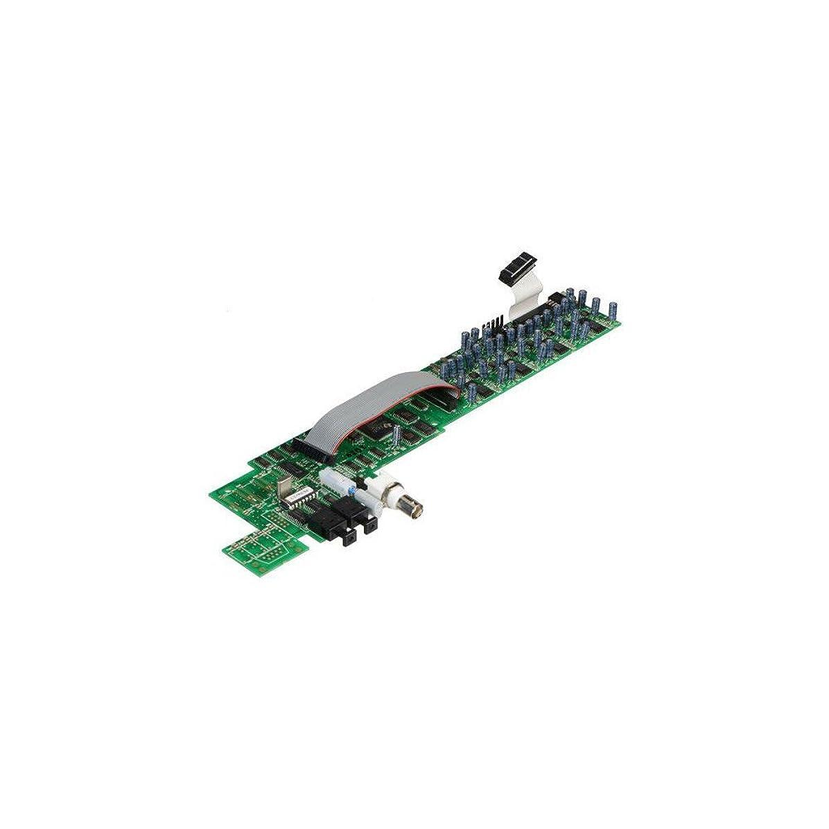コンパイル消費空中Focusrite A/D オプションカード (ISA One/430 mkII用) ISA One/ISA 430 MKII用カード フォーカスライト