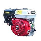 MOTORE A SCOPPIO6,5 HP 196 cc avviamento a strappo e protezione contro mancanza olio