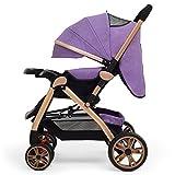 Poussette de bébé nouveau-né pour nourrisson pliant cabriolet convertible de luxe haute vue anti-choc Landau Poussette avec porte-gobelet durable roues (Couleur : Gris)