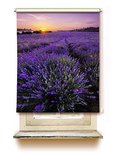 gardinen-for-life Rollo Lavendelfeld - Sichtschutz mit Motiv, Seitenzugrollo Seitenzug Klemmrollo - Versch. Größen (45 cm x 125 cm)