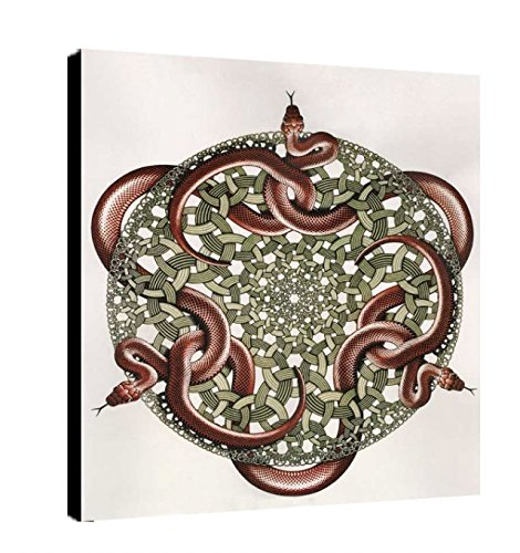Quadro intelaiato Pronto da Appendere Escher 21 cm 50x70 Stampa su Tela Canvas Vendita Falsi di Autore Il Negozio di Alex