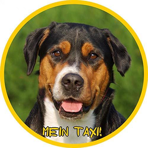 Petsigns Aufkleber - großer Schweizer Sennenhund - für Auto - Briefkasten - Glas, 30 cm