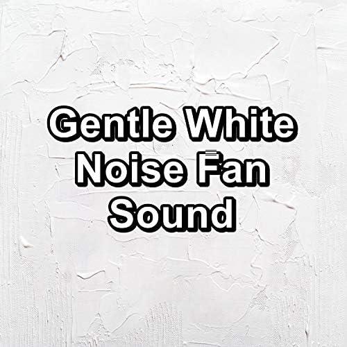 Granular Brown Noise, Granular & Granular White Noise�