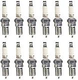 NGK (2238) TR5 V-Power Spark Plug, (12)