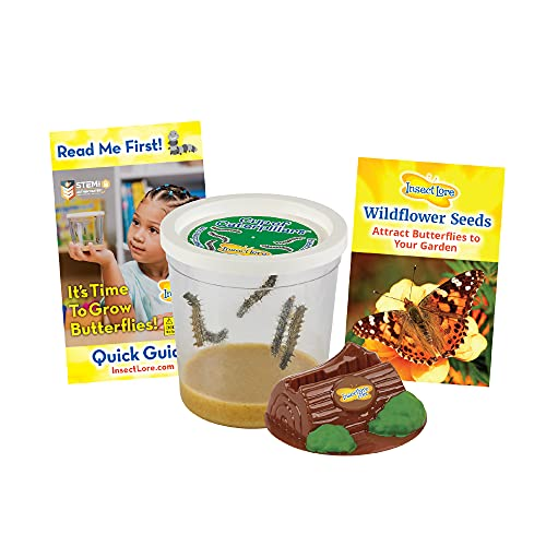Insect Lore Cup of Caterpillars - Life Science & STEM Education