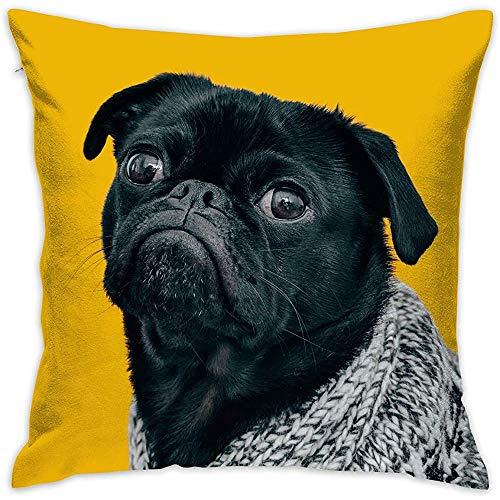 July Mops Decoratieve overtrek voor hond zonder inzetstukken, kussensloop voor thuis, sofa, slaapkamer, auto, stoel, huisfeest