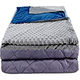 Aviano 25 lbs Weighted Blanket (Cooling Cotton) | Adult 60'x80' | w/Super Soft Duvet Cover (Cuddly Warm) | 25lb Weighted Blanket Combo | for Adults Over 220 lb | Dual-Sided Color