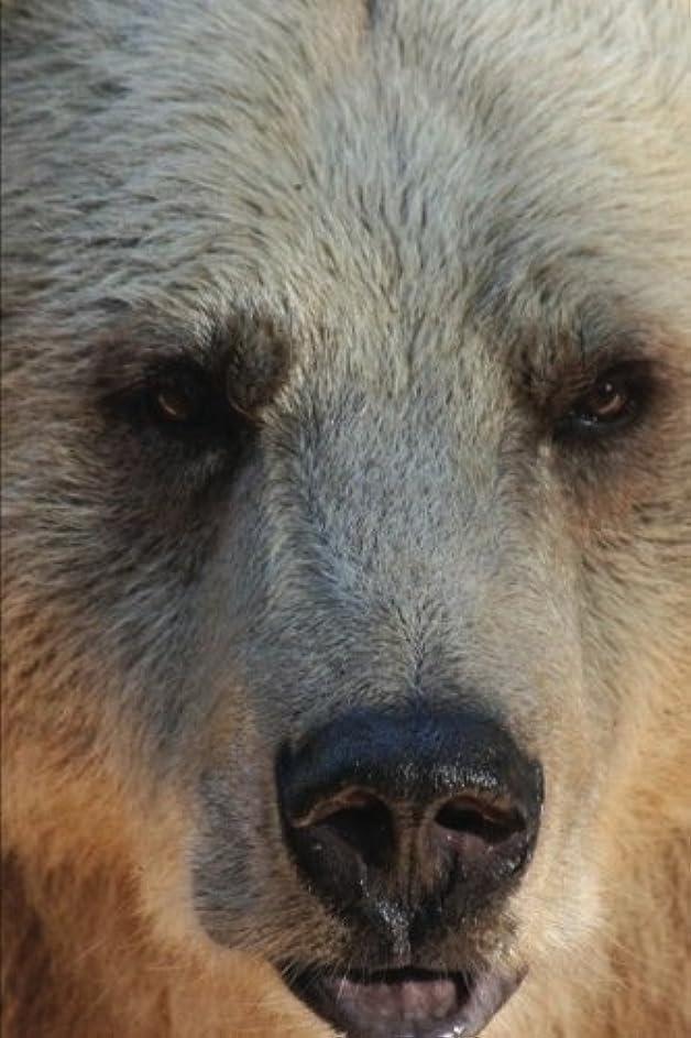 ネックレット単独で位置するGrizzly Bears: Journal