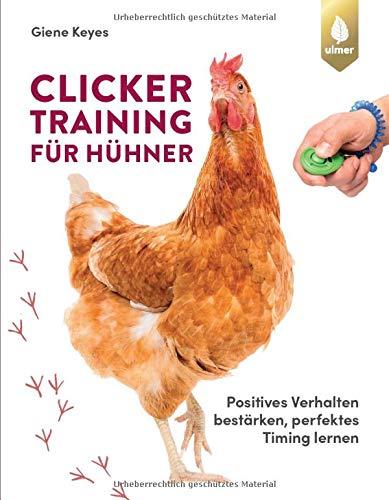 Clickertraining für Hühner: Positives Verhalten bestärken, perfektes Timing lernen