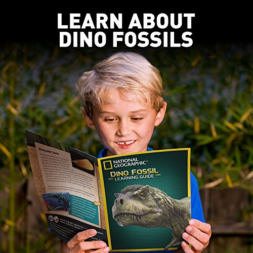 NATIONAL GEOGRAPHIC Dino Fossil Dig Kit – Excavate 3 real fossils including Dinosaur Bones & Mosasaur Teeth - Great Jurassic Science gift for Paleontology and Archeology enthusiasts of any age