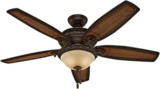 Best hunter 54 ceiling fan with light Reviews