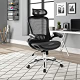 Ergonomic High Back Office Chair Lumbar Support Mesh Swivel Executive Computer Desk Chair with Adjustable Headrest for Teens/Adults,Black