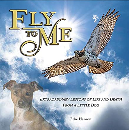 Fly to Me