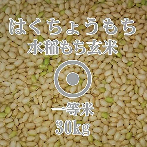 令和元年産 北海道産もち米 はくちょうもち 玄米 30Kg 北海道米 お米 北海道 ほくべい