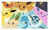 HiddenSupplies.com Pokemon Eevee Evolution Playmat + Free RFG Small Sized Sleeves 75 Count