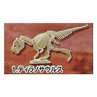 カプセルコレクション 恐竜骨格ミュージアム ティラノザウルス エポック社 ガチャポン フィギュア