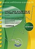 Droit des sociétés et autres groupements - Corrigé - Canditats à l'UE 2 du DCG. Cas pratiques