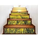 WYHK Coliflor dorada autoadhesivas Pegatinas de escalera de vinilo extraíbles 18cm×100cm×6 piezas