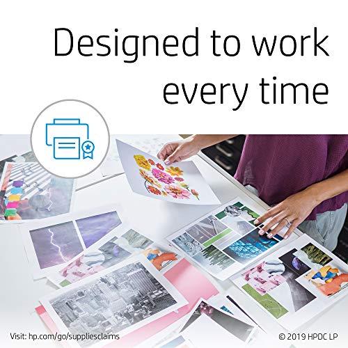 HP 301 Multipack Original Druckerpatronen (2x Schwarz, 1x Farbe) für HP Deskjet, HP ENVY, HP Photosmart & Amazon Basics Druckerpapier, DIN A4, 80 g/m², 500 Blatt, Weiß