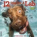 12 Uses for a Lab 2021 Wall Calendar (Dog Breed Calendar)