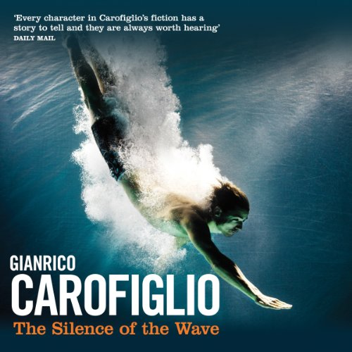 The Silence of the Wave audiobook cover art