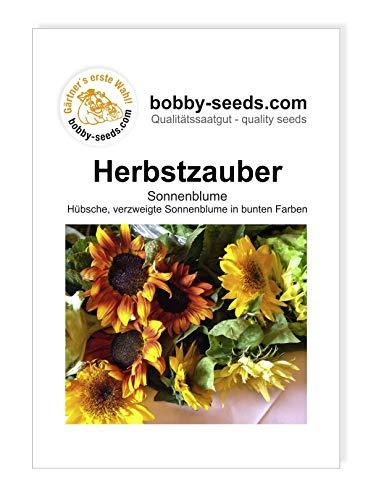 Herbstzauber Sonnenblume von Bobby-Seeds Portion
