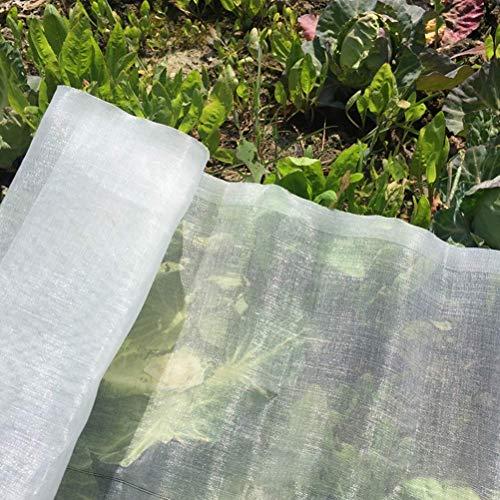 HJTLK Red de protección de jardín, Red Transparente Anti-Mosca, Utilizada para la Barrera Vegetal y Vegetal de árboles frutales, Adecuada para jardín, Patio