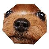 Paraguas anti-UV para sol/lluvia,Aseo Perro marrón Yorkshire Terrier Pestañas largas y preciosas Fauna Show Yorkie Pet Paraguas de viaje a prueba de viento: compacto, automático.