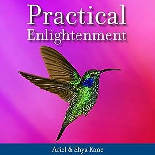 Practical Enlightenment audiobook cover art