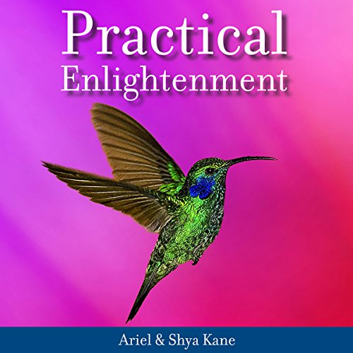 Practical Enlightenment audiobook cover art