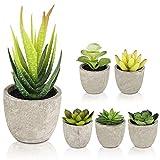 Gobesty Künstliche Sukkulenten Pflanzen, 6 Stücke Kunstpflanze mit Töpfen Mini Kunststoff Fälschung Grünes Pflanzen Deko für Büro, Tische, Balkon, Wohnzimmer, Schlafzimmer