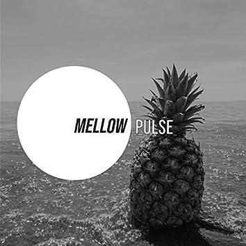 # 1 Album: Mellow Pulse