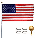 Titan Telescoping Flag Poles, 25ft Silver – Heavy Duty Flag Pole Kit, Includes Aluminum Telescoping Flag Pole, 4 x 6 American Flag, Hardware for 2 Flags and Detailed Installation Instructions